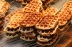 Time for a sneaky Gaufre?